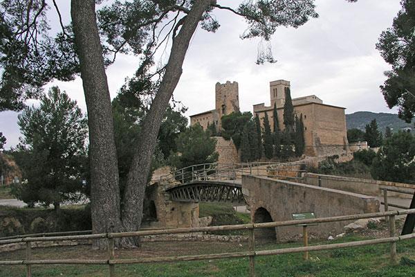 Veterinario Sant Pere de Ribes